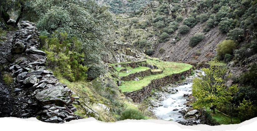 Valle de la Fragosa