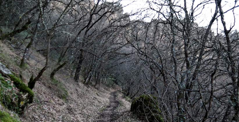 Hoz del Jarama en invierno