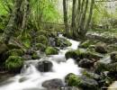 Este arroyo, que da nombre al valle, es el mismo que san Genadio ordenó