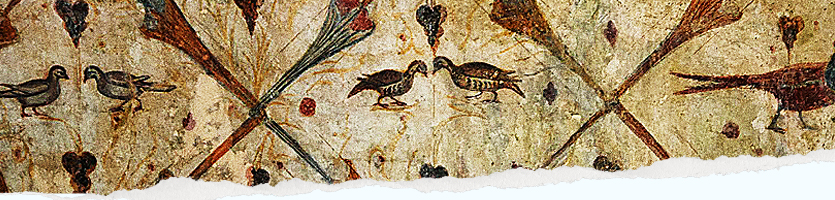 Pinturas de Santa Eulalia de Bóveda, pájaros